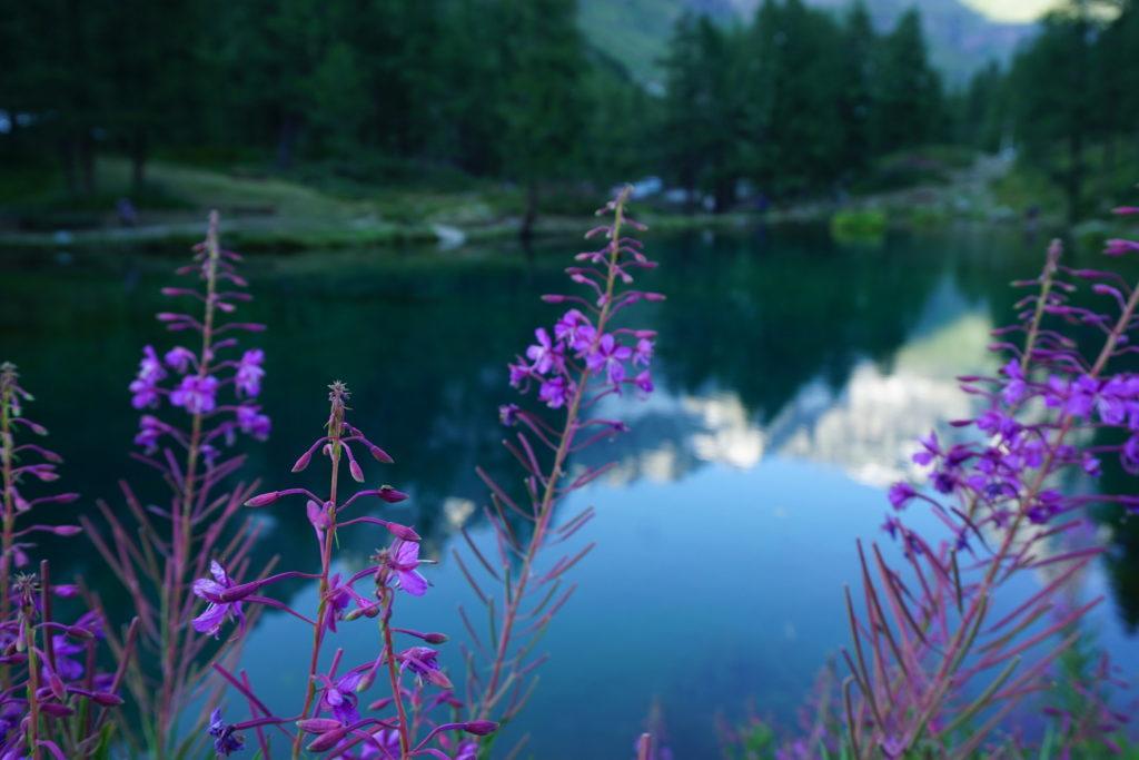 ブルー湖に写るモンテチェルビーノ